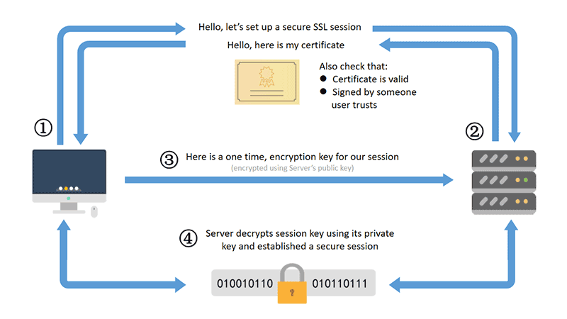 Ssl Certificates Secure Your Data Transactions Sugarhosts